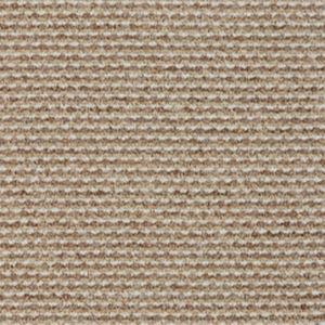 Ace 700 Wildwood Carpet